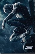 Black Spiderman Picture